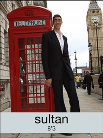sultan_2016