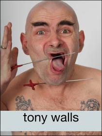 tony walls